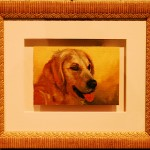 Golden Retriever Framed Giclées